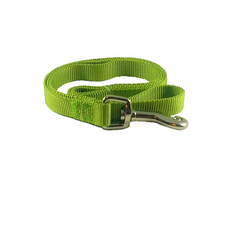 Parrot Green Nylon Dog Leash