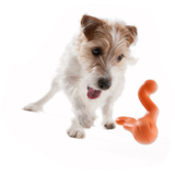 Tizzi® Treat Fetch Dog Toy