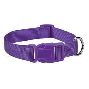 Ultra Violet Purple Adjustable Nylon Dog Collar SM
