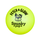 Fetch and Glow Ball Dog Toy - Yellow