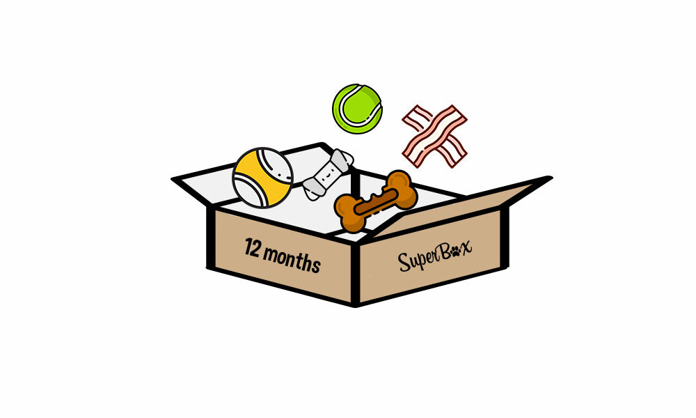 Subscribe to Twelve Month SuperBox