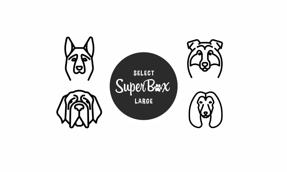 Subscribe to SuperBox Size Large