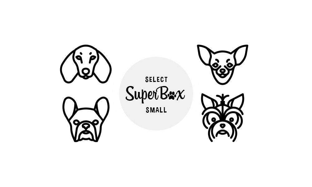 Subscribe to SuperBox Size Small