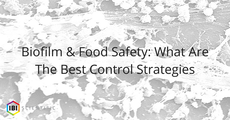 Biofilm & Food Safety: What Are The Best Control Strategies?
