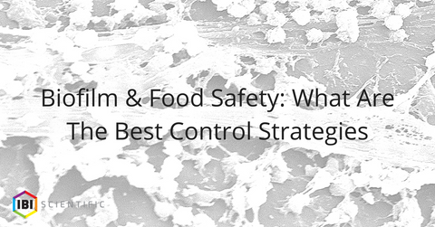 Biofilm & Food Safety: What Are The Best Control Strategies
