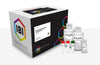 Large DNA Fragment Extraction Kit - 100 Preps