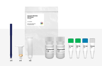 Mini Genomic DNA Kit (Tissue)