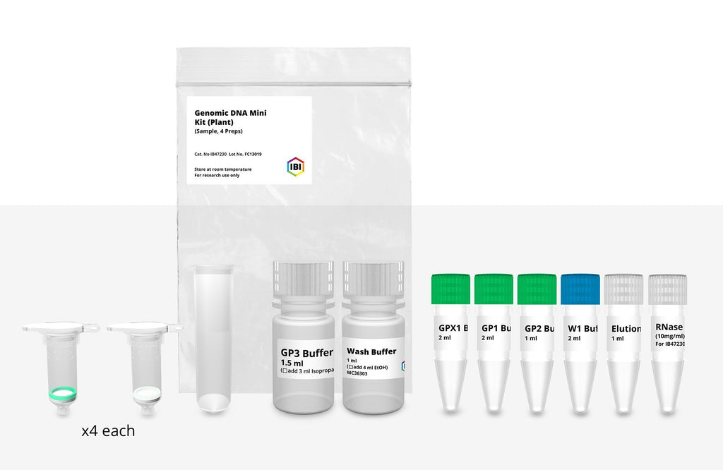 Mini Genomic DNA Kit (Plant/Fungi)