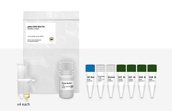gMAX Mini Genomic DNA Kit