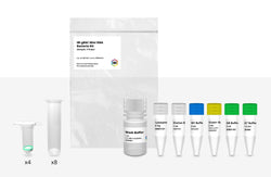 gBAC Mini Genomic DNA Sample Kit – 4 Preps