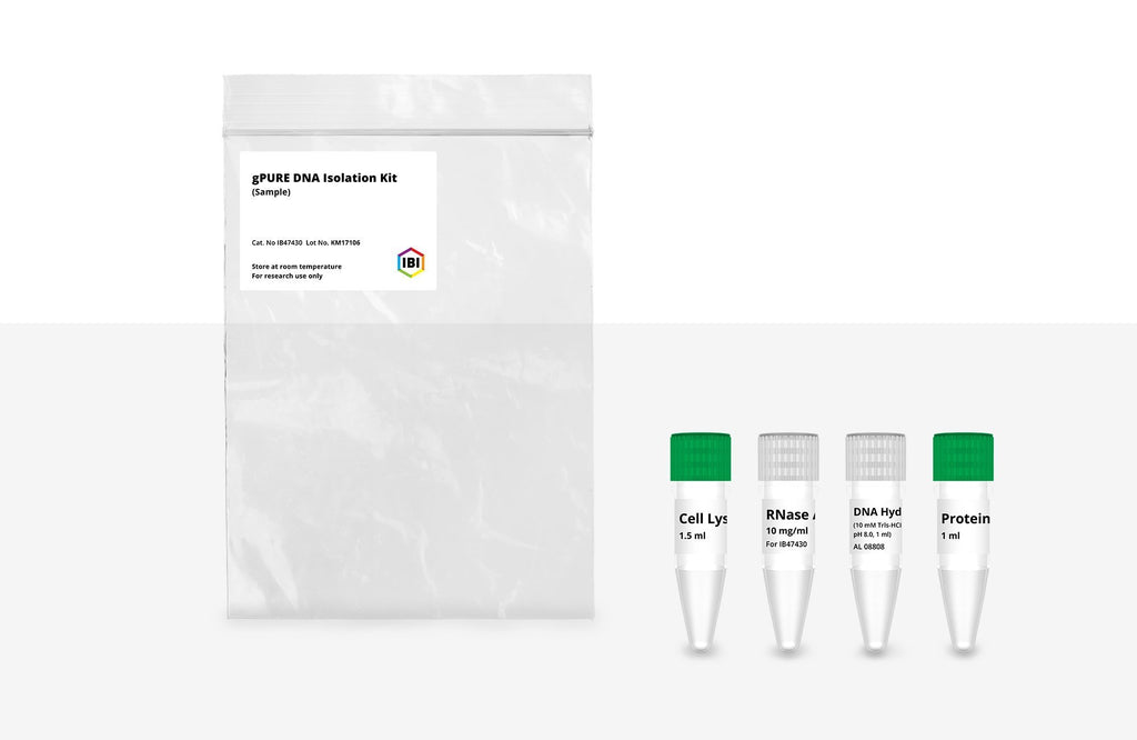 gPURE DNA Isolation Kit