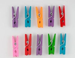 Mini Wooden Pegs (20pcs)