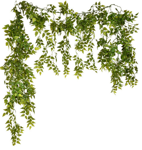 BUTCHER'S BROOM GARLAND 6'