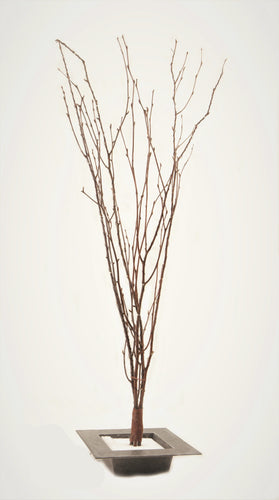 "*60"" LED Lighted Birch Branches"