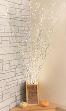 "48"" LED Lighted Curly Willow Branches, Pearl White with 8 Function Remote"