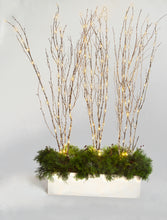 LED Lighted Ice Birch Branches