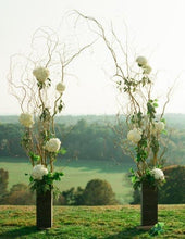 Lighted Curly Willow Wedding Arch with Vases & Remote