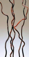 Mahogany Curly Willow 2 ft tall /choice of diameter