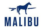 Horse with surfboard Malibu design