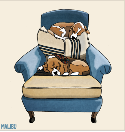 Beagle Bunks