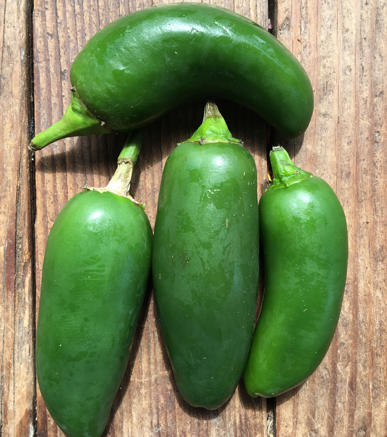Jalapeno Pepper - Each
