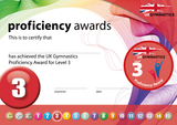 UK Gymnastics Proficiency Level 3 Award