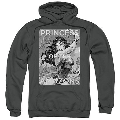 Wonder Woman Princess Of The Amazons Gray Pullover Hoodie
