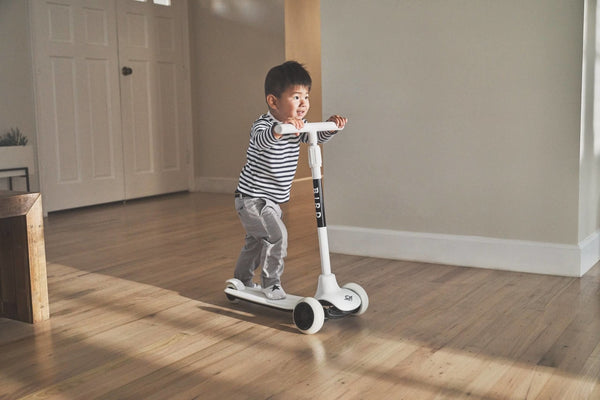 Birdie Kids Scooter Jet Black (Non Electric)