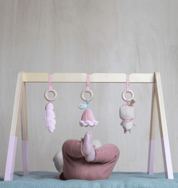 Little Dutch Playgym in accessories (Pink)