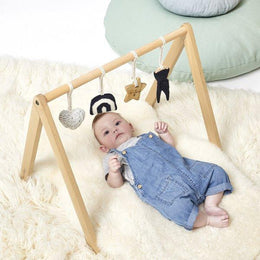 Little Green Sheep A Frame Baby Play Gym - Rainbow Midnight