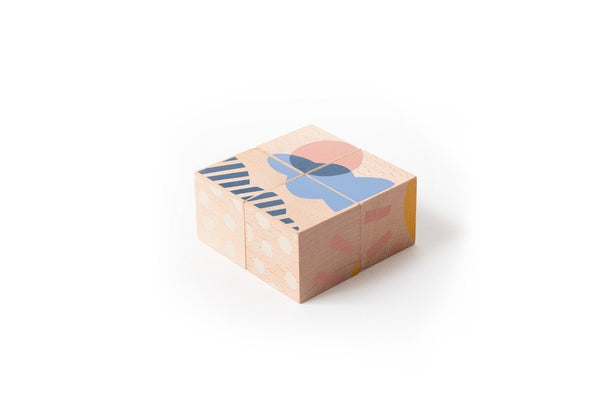Nobodinoz Wooden Cubes - Weather
