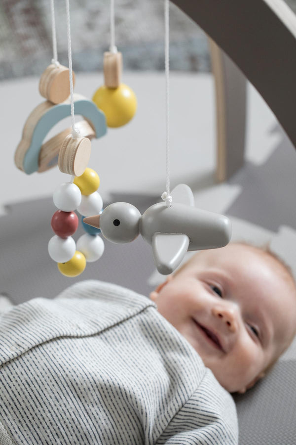 Sebra Red Dot Design Winner - Warm Grey Baby Gym