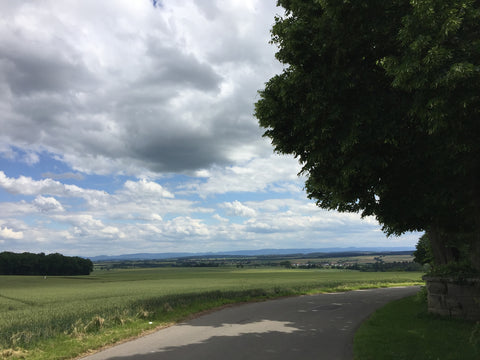 View of the Vollmaringen countryside