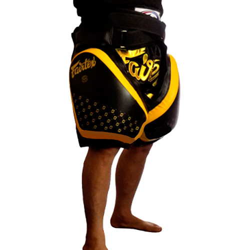 Fairtex Tp4 Thigh Pads