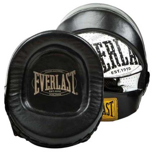 Everlast Boxing 1910 Micro Punch Mitts