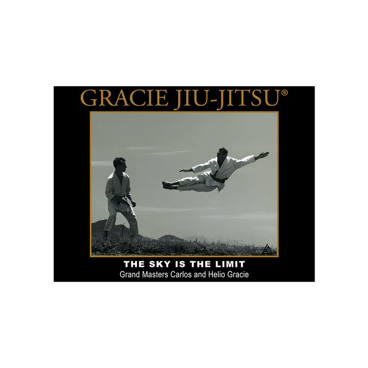"Gracie The Sky is the Limit (18x24"") - The Fight Factory"