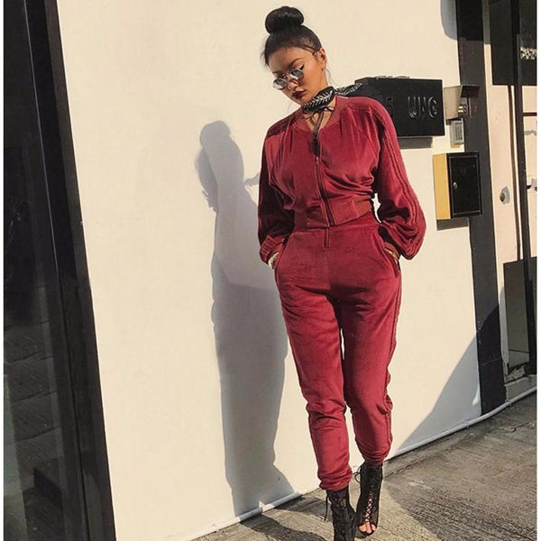 Y LABEL APPAREL: Velour Velvet Tracksuit - Y LABEL APPAREL