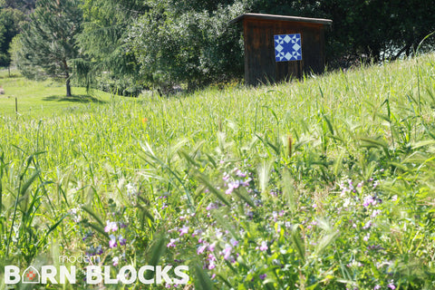 Modern barn quilt block in field of wildflowers