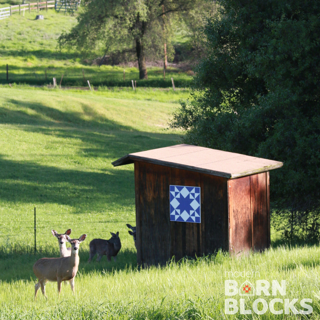 Blue and white barn block on outbuilding with deer