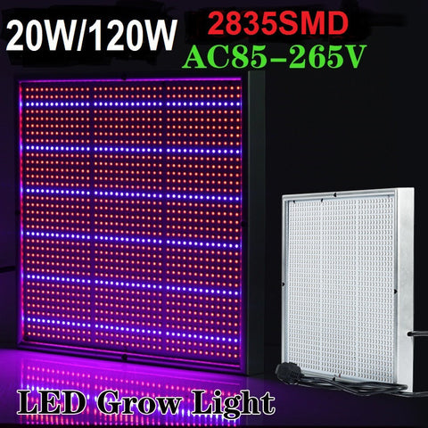 High Power Hydroponic Full Spectrum LED Greenhouse Grow Light 20W/120W