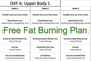 Fitness Plan - Free Fat Burning Plan