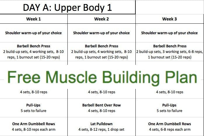 Fitness Plan - Free Muscle Building Plan