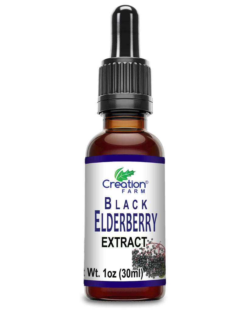 Black Elderberry Extract - Supplement a Healthy Lifestyle
