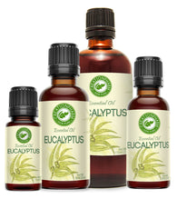 Eucalyptus Essential Oil from Creation Pharm - Creation Pharm