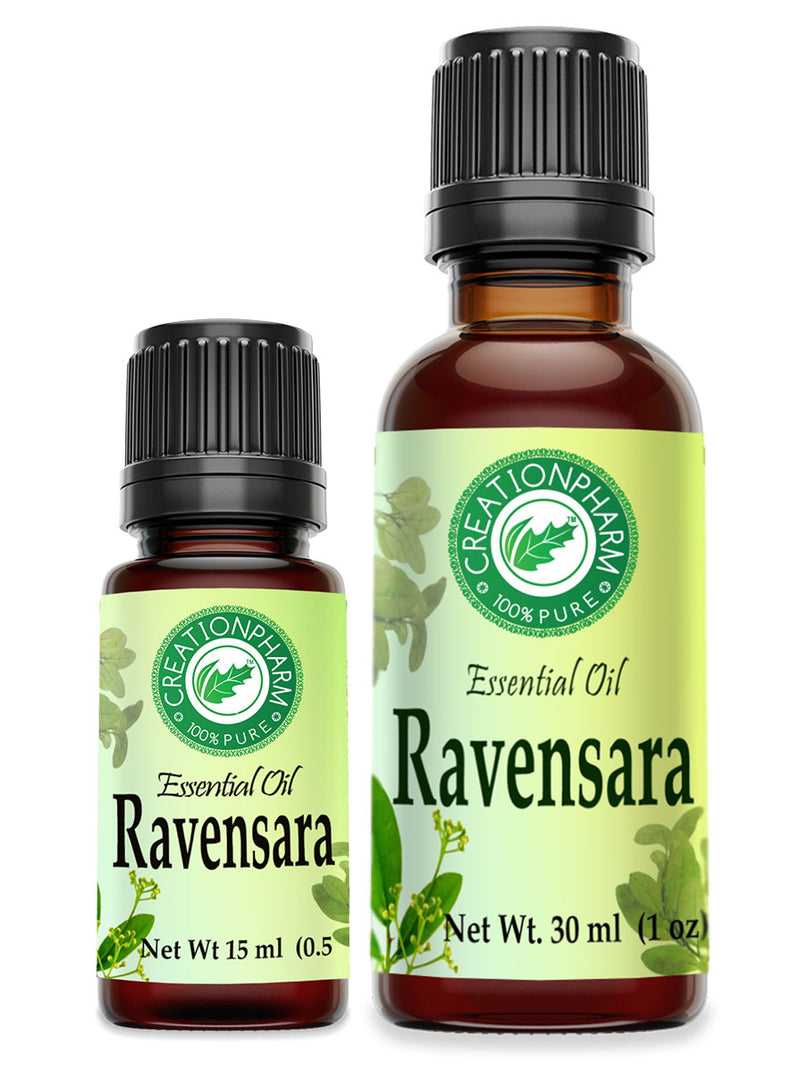 Ravensara Essential Oil 100% Pure Creation Pharm - Aceite esencial Ravensara - Creation Pharm