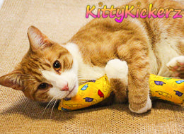 Kicker Stick Organic Catnip Cat Toy Handmade in USA by Kitty Kickerz Best Cat Toy Popular Catnip Toy Top Rated Adorable Marmalade Ginger Cat