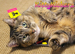 Kitty Kickerz - Play Mat Cat Toy with Organic Catnip