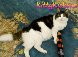 Kicker Stick Organic Catnip Cat Toy Handmade in USA by Kitty Kickerz Best Cat Toy Popular Catnip Toy Top Rated Adorable Cute Fluffy Cat