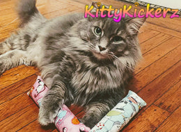 Kicker Stick Organic Catnip Cat Toy Handmade in USA by Kitty Kickerz Best Cat Toy Popular Catnip Toy Top Rated Adorable Fluffy Grey Cat