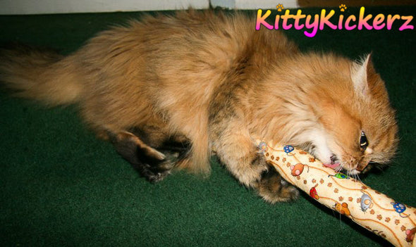 Kicker Stick Organic Catnip Cat Toy Handmade in USA by Kitty Kickerz Best Cat Toy Popular Catnip Toy Top Rated Cute Kitten on Pink Fabric